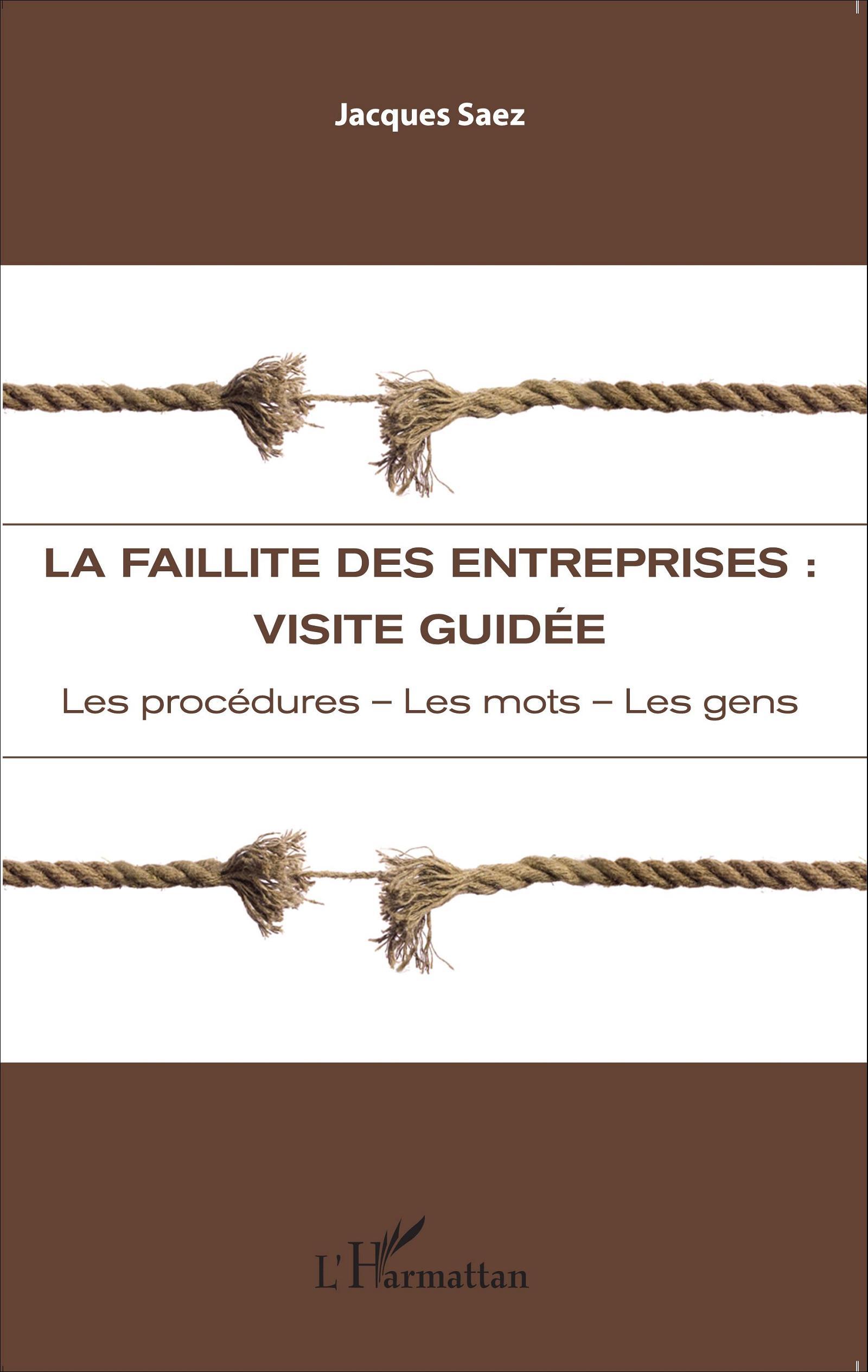 LA FAILLITE DES ENTREPRISES : VISITE GUIDÉE - Les ...