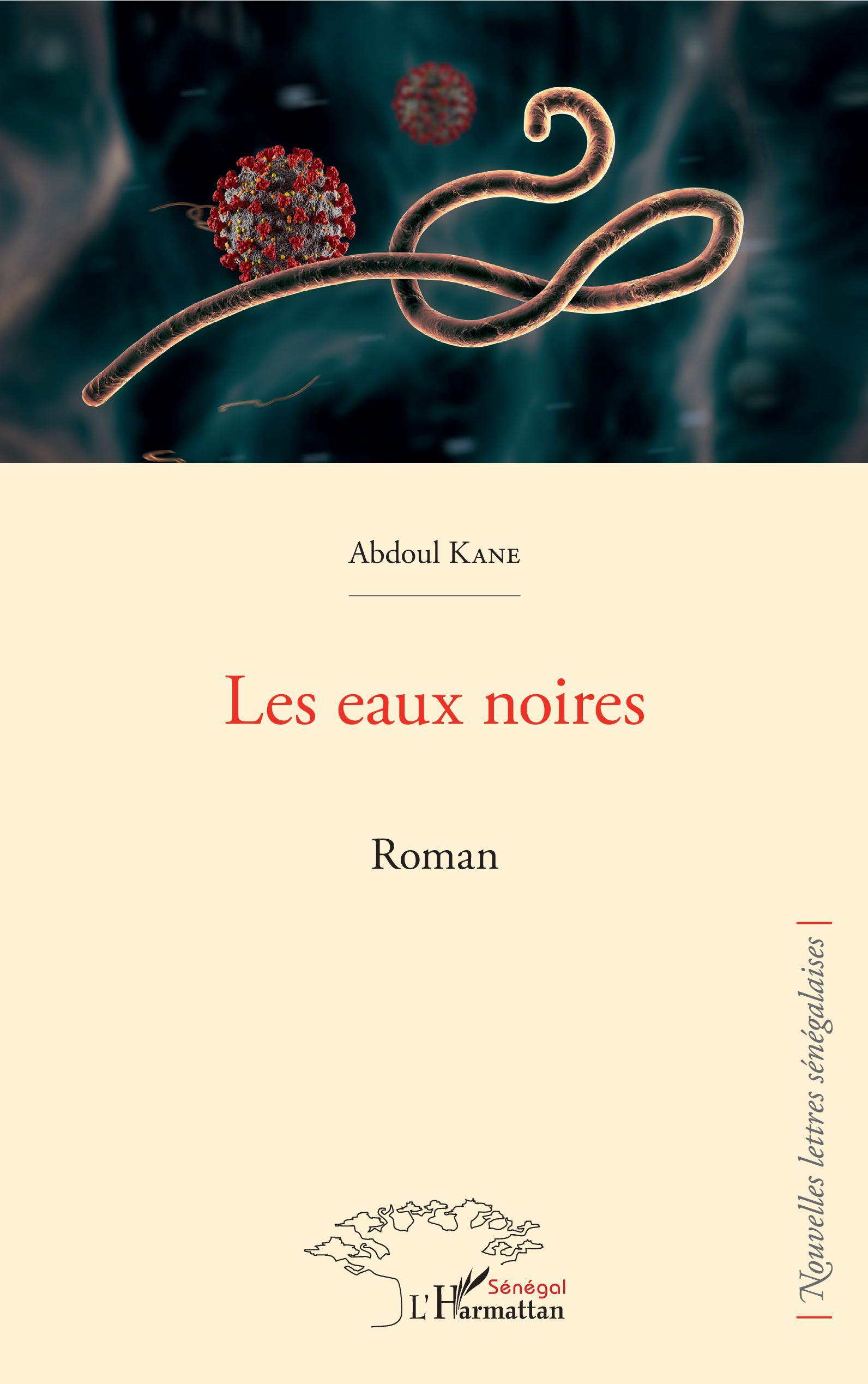 LES EAUX NOIRES. ROMAN, Abdoul Kane - livre, ebook, epub - idée lecture