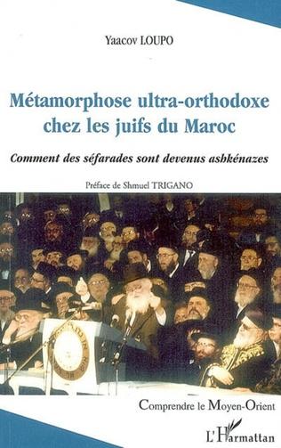 Couverture Métamorphose ultra-orthodoxe chez les juifs du Maroc