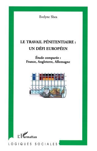Couverture Le travail pénitentiaire : un défi européen