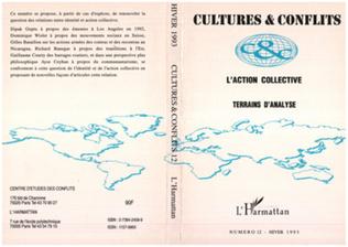 Couverture L'action collective : terrains d'analyse