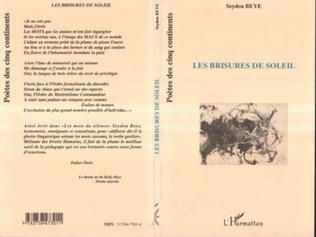 Couverture LES BRISURES DE SOLEIL