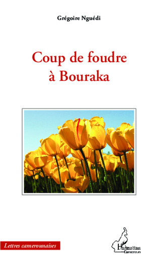 Couverture Coup de foudre à Bouraka