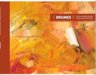 Couverture Brumes