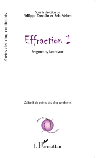 Couverture Effraction I