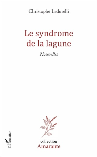 Couverture Le syndrome de la lagune