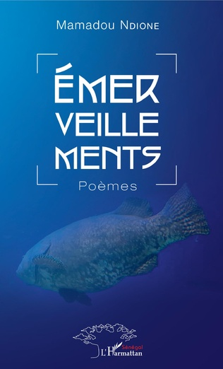 Couverture Emerveillements