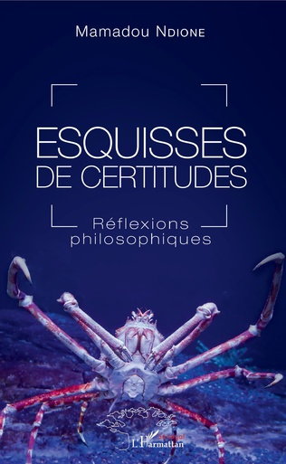 Couverture Esquisses de certitudes