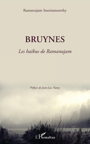 Couverture Bruynes