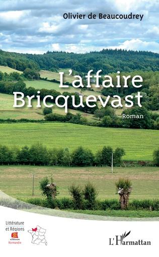 Couverture L'affaire Bricquevast