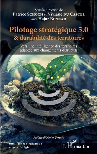 Couverture Pilotage stratégique 5.0 et durabilité des territoires