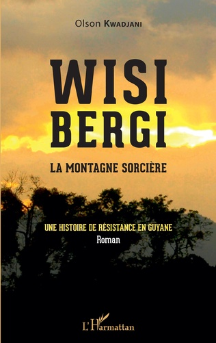 Couverture Wisi Bergi