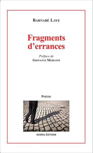Couverture Fragments d'errances