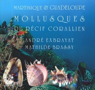 Couverture Mollusques du récif corallien