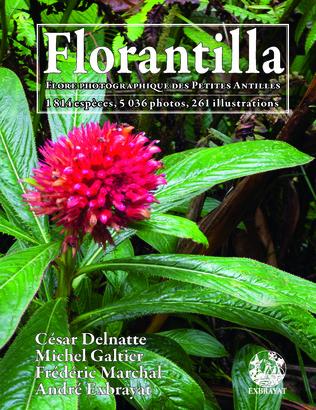 Couverture Florantilla