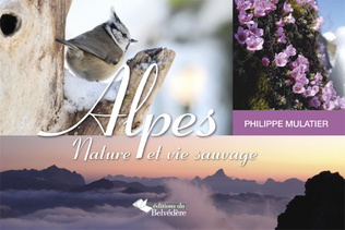Couverture Alpes, nature et vie sauvage
