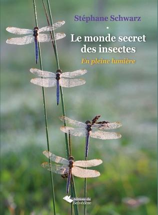 Couverture Le monde secret des insectes