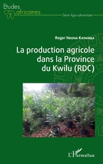 La production agricole dans la Province du Kwilu (RDC) - Roger Ndona Kayamba