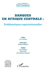 Banques en Afrique centrale : problématiques organisationnelles -