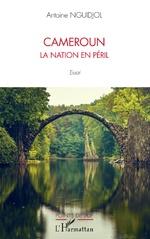 Cameroun la nation en péril - Antoine Nguidjol