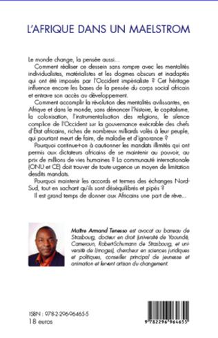 4eme L'Afrique dans un maelstrom