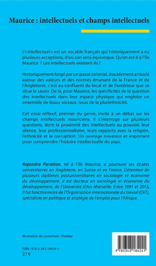 4eme Maurice : intellectuels et champs intellectuels
