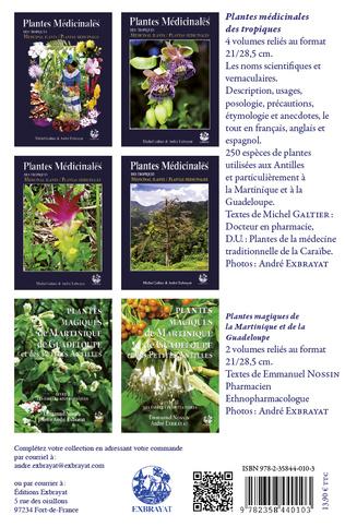 4eme Fruits des Antilles