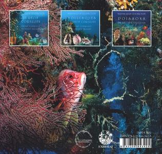 4eme Poissons du récif corallien